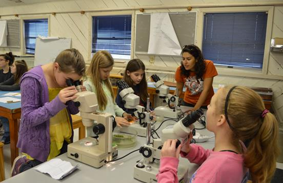 Microscopes in the classroom